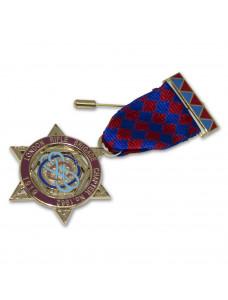 20 x  Royal Arch Centenary Jewels