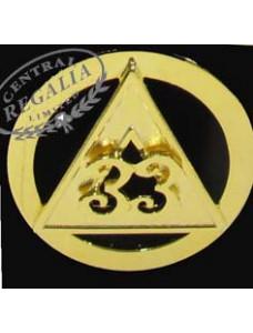 33rd Degree Cap Badge -  Inspectors General
